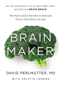 brainmakerbook