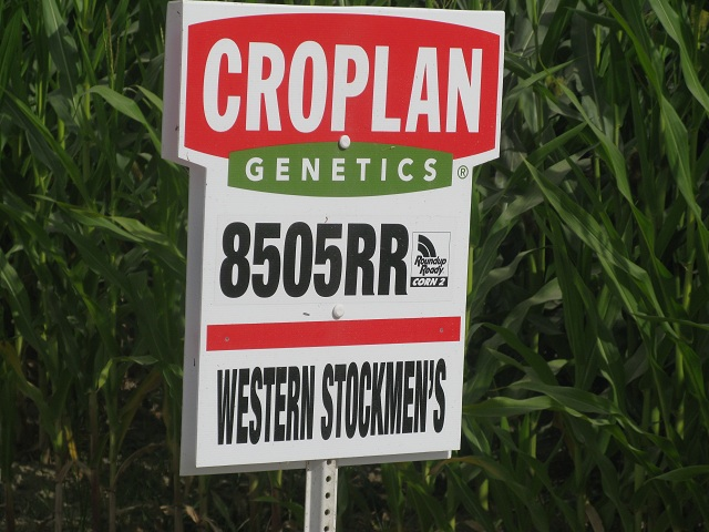 GMOsign
